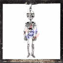 Great skeleton with 5 articulations
